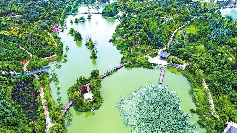 """郑州市雕塑公园满眼翠绿成为""""城市之肺"""""""