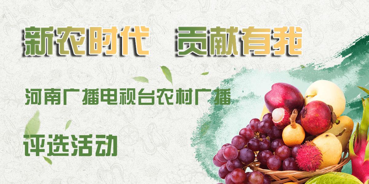 """""""2019新农时代 贡献有我""""网络报名通道"""