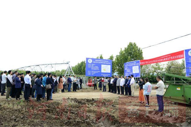 全力守护国人餐桌!河南农大全产业链协同创新,推动玉米产业高质量发展