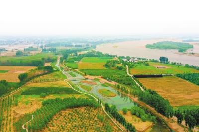 走黄河 看生态 洛阳篇:让沿黄群众亲水乐水