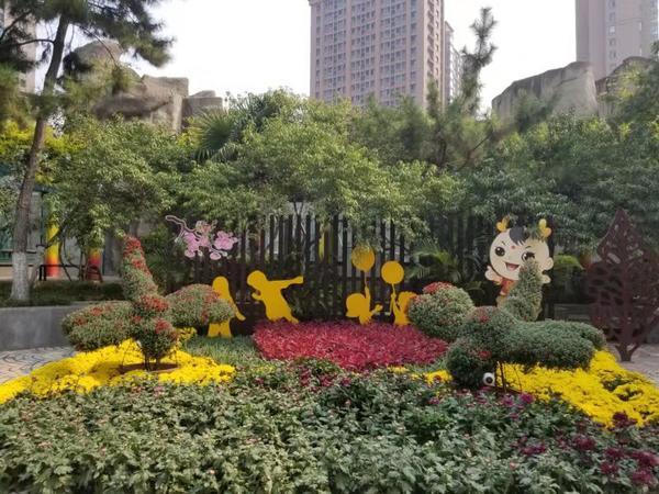 国庆不知道去哪玩?带着家人到郑州市动物园看白狮吧