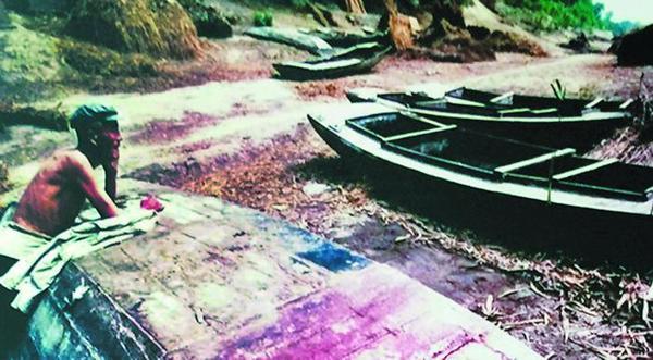 大河滔滔今又是 —黄河流域生态保护和高质量发展调研记
