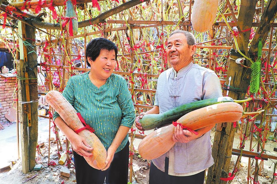 丰收的喜悦平顶山市大力发展生态观光旅游农业