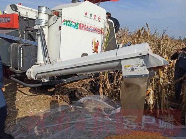 """品种+栽培+农机,看舞阳如何打通玉米全程机械化""""最后一关"""""""